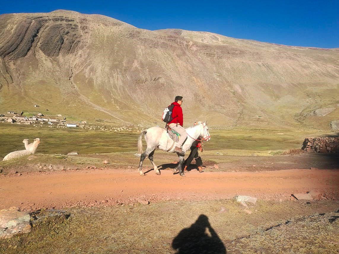 Horse Rental at Rainbow Mountain Peru
