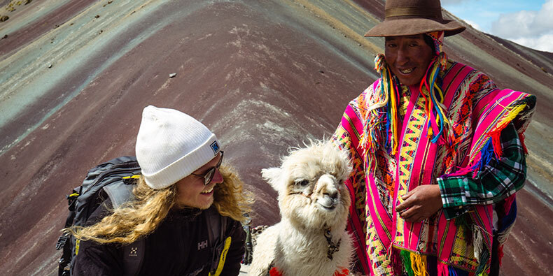 cute llama in rainbow mountain